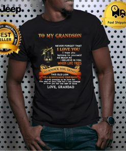 Lion To My Grandson Never Forget That I Love You When Life Tries To Knock You Down This Old Lion T shirt